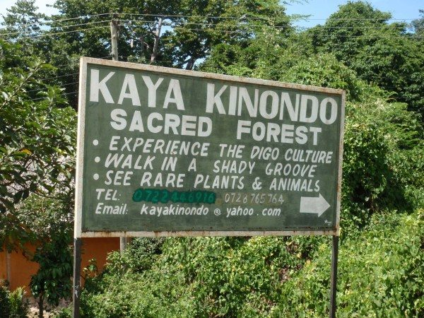 volunteer project: Kaya Kinondo Ecotourism Project photo 1