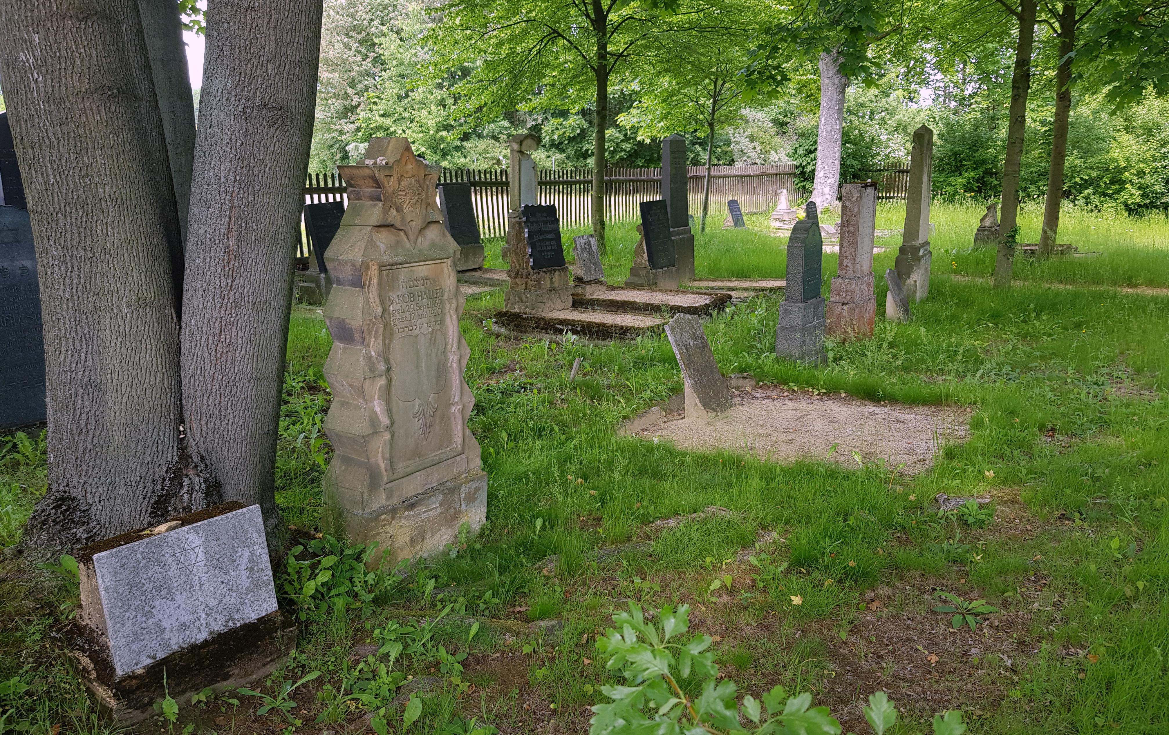 volunteer project: MAZEWA - Jewish life and death in the Zittau region photo 2
