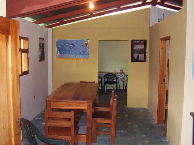 volunteer project: VOLUNTEERING IN GALAPAGOS photo 3