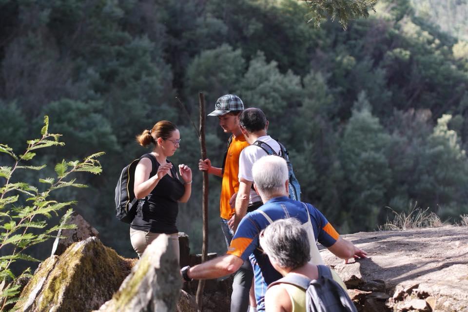 volunteer project: On the way to BLOOM - APAFF Associação Protecção Animal da Figueira da Foz photo 3