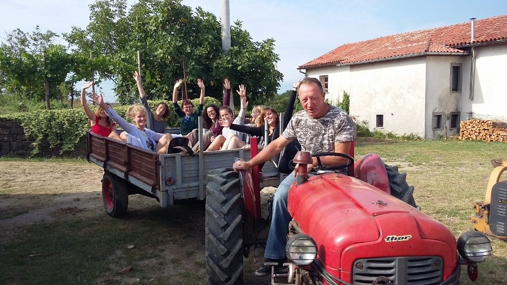 volunteer project: PRESERVING LOCAL NATURAL AND CULTURAL HERITAGE IN ISTRIA, SLOVENIA photo 11