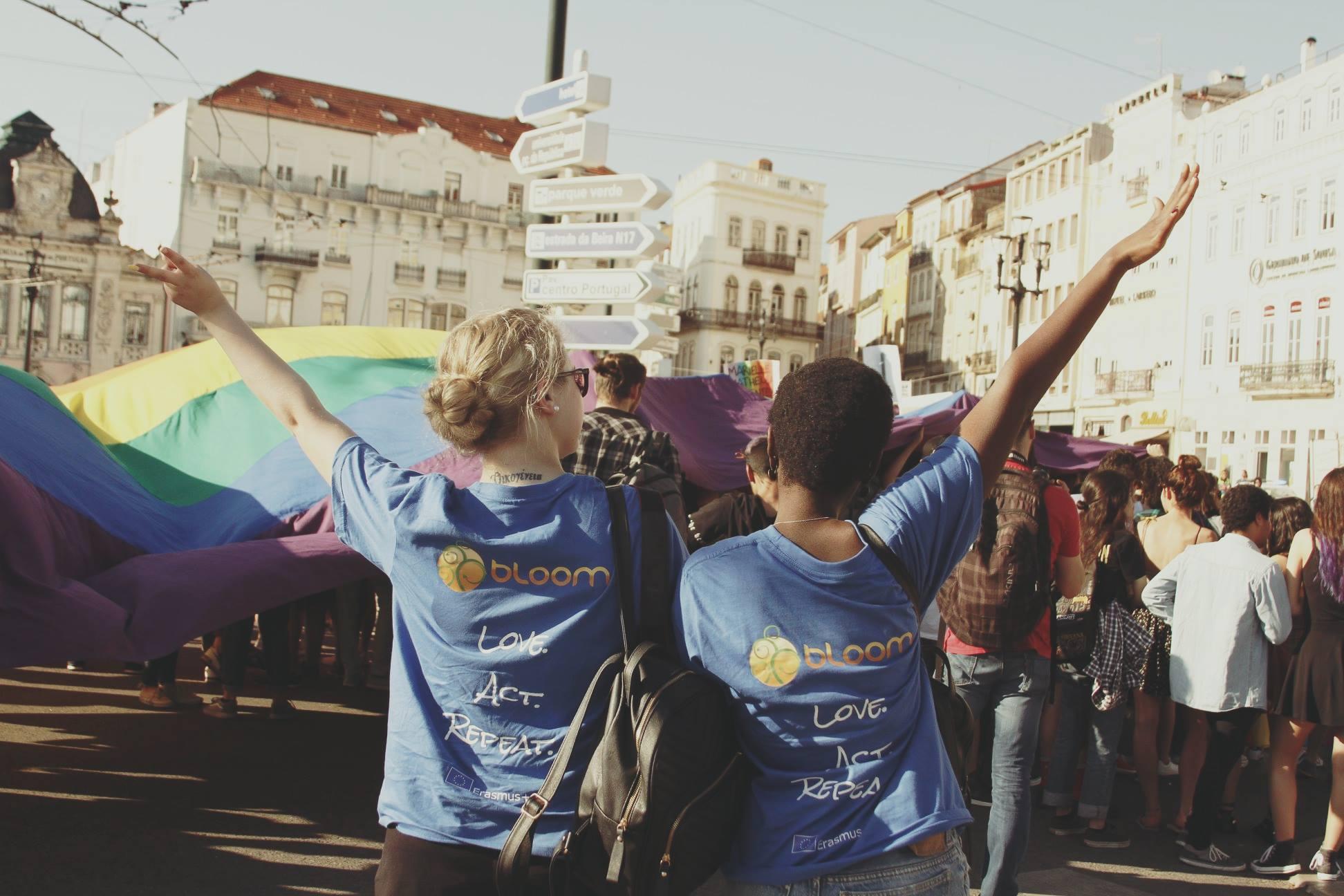 volunteer project: On the way to BLOOM - APAFF Associação Protecção Animal da Figueira da Foz photo 2