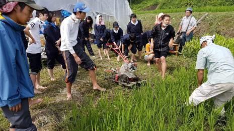 volunteer project: Gose 19-09 (Nara) photo 1