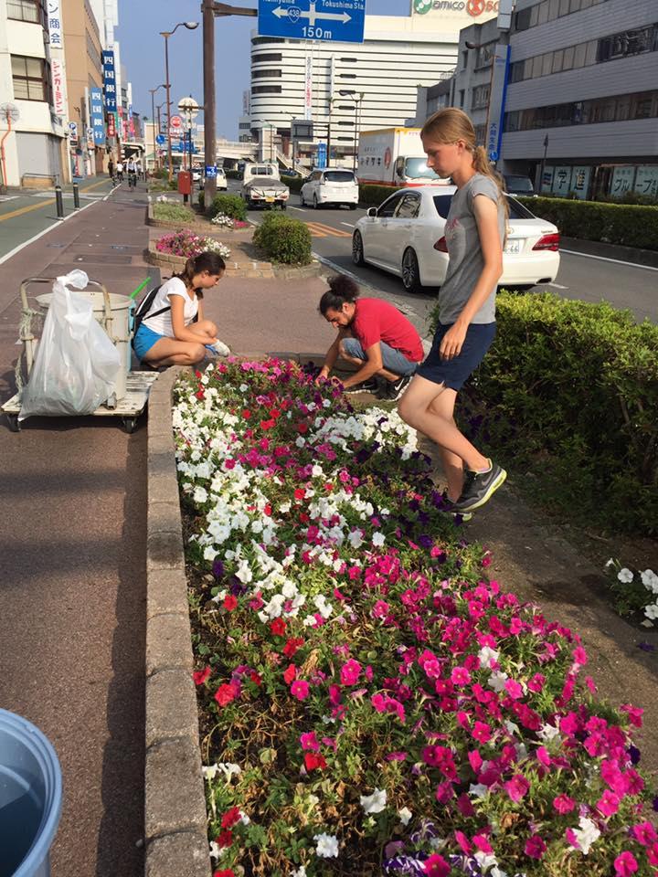 volunteer project: Aibahama (Tokushima) photo 2