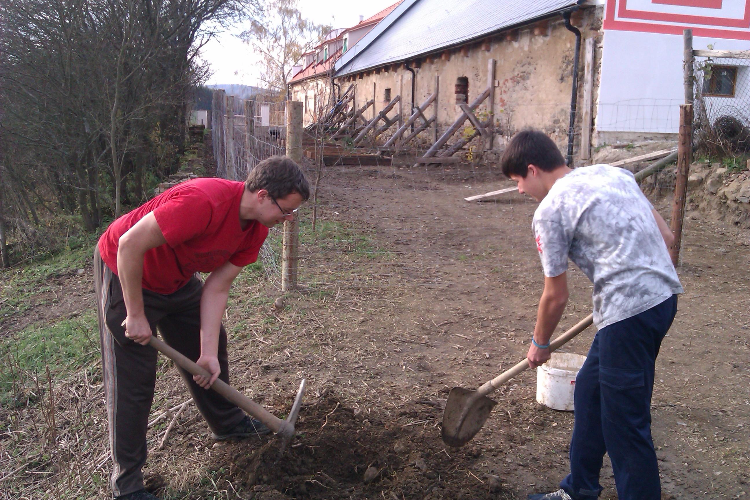 volunteer project: BAROQUE MANOR BOROTIN photo 1
