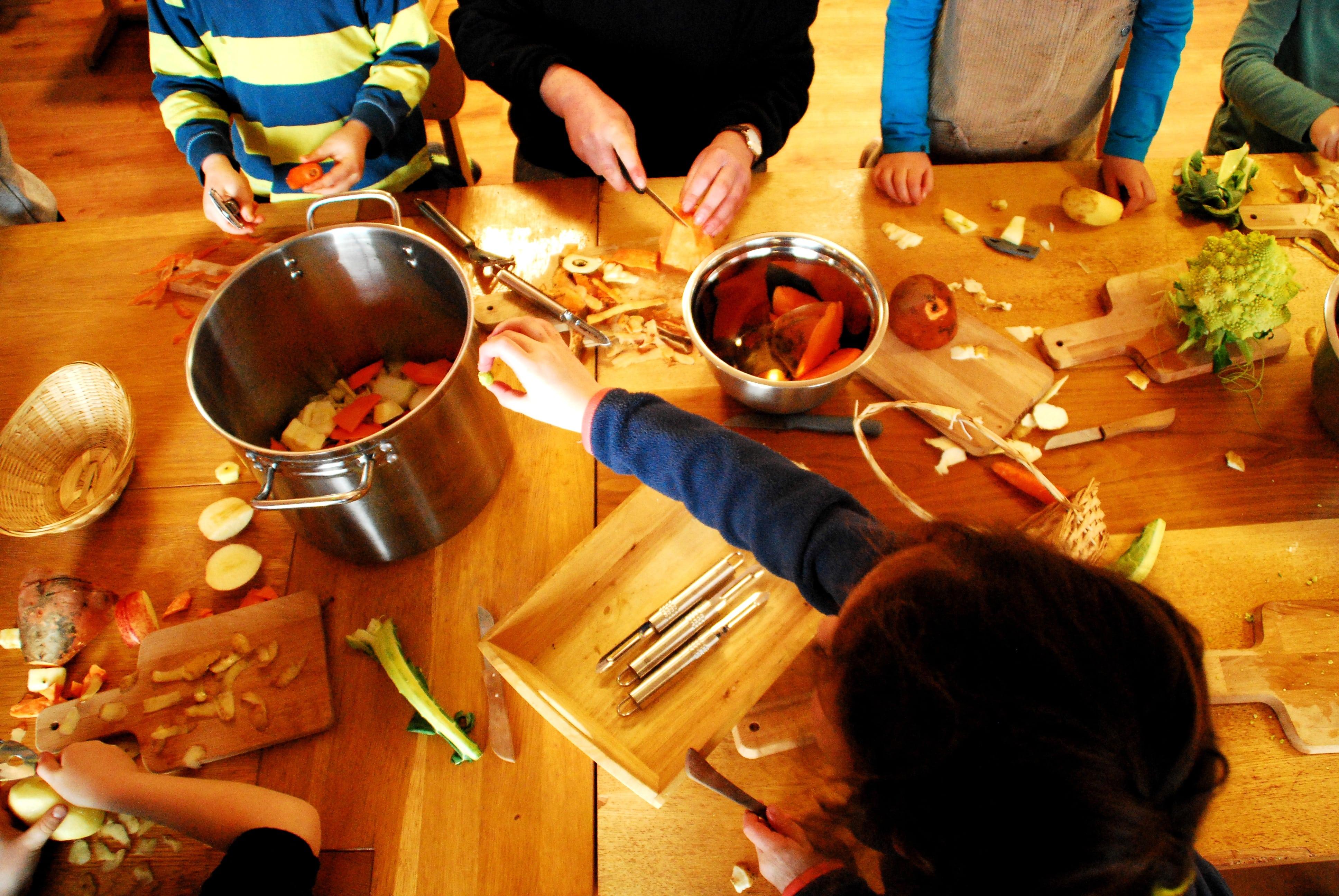 volunteer project: Galway Steiner National School (CES/SVE)  photo 1
