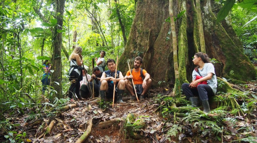 volunteer project: Biological Reserve of Fudebiol photo 1
