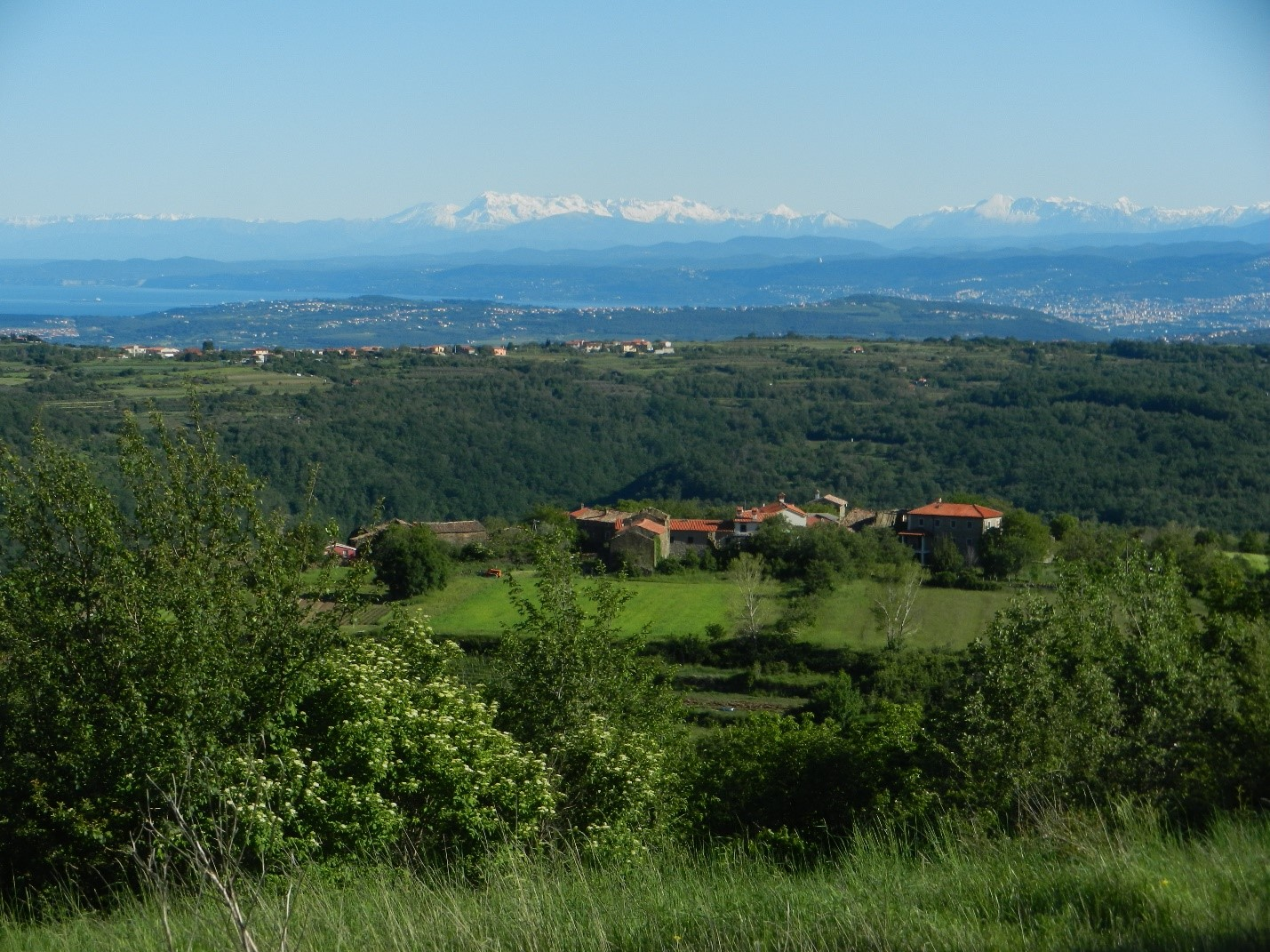 volunteer project: PRESERVING LOCAL NATURAL AND CULTURAL HERITAGE IN ISTRIA, SLOVENIA photo 8