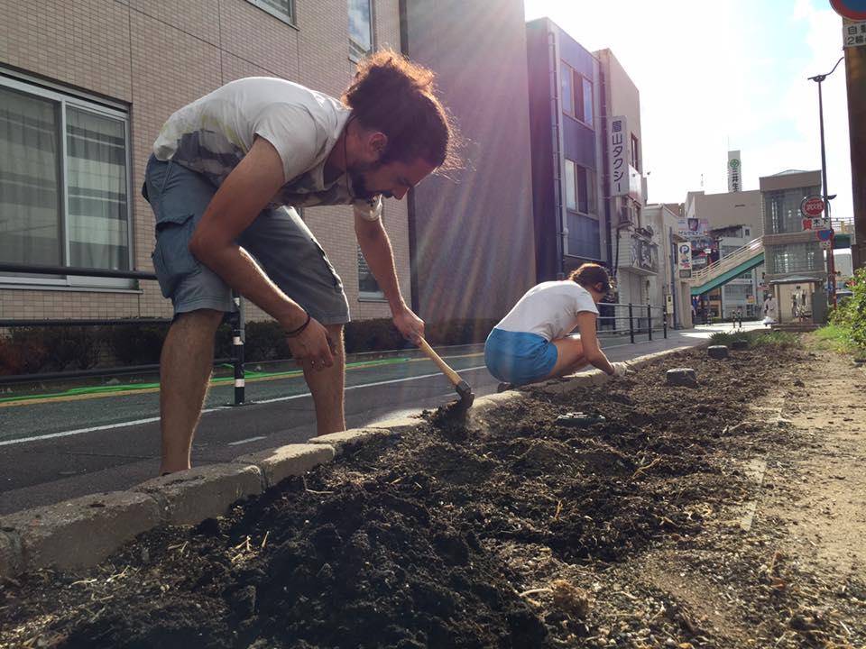 volunteer project: Aibahama (Tokushima) photo 1