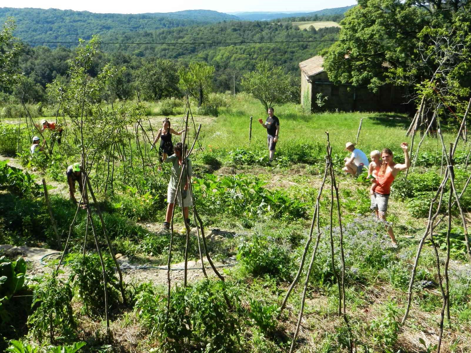 volunteer project: PRESERVING LOCAL NATURAL AND CULTURAL HERITAGE IN ISTRIA, SLOVENIA photo 4