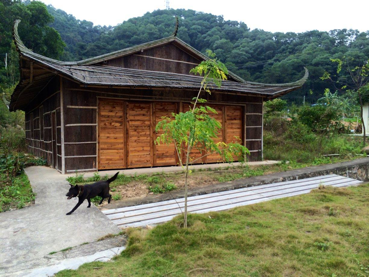 volunteer project: Sustainable Farming and Animal Sanctuary photo 2