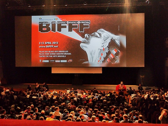 volunteer project: BIFFF photo 2