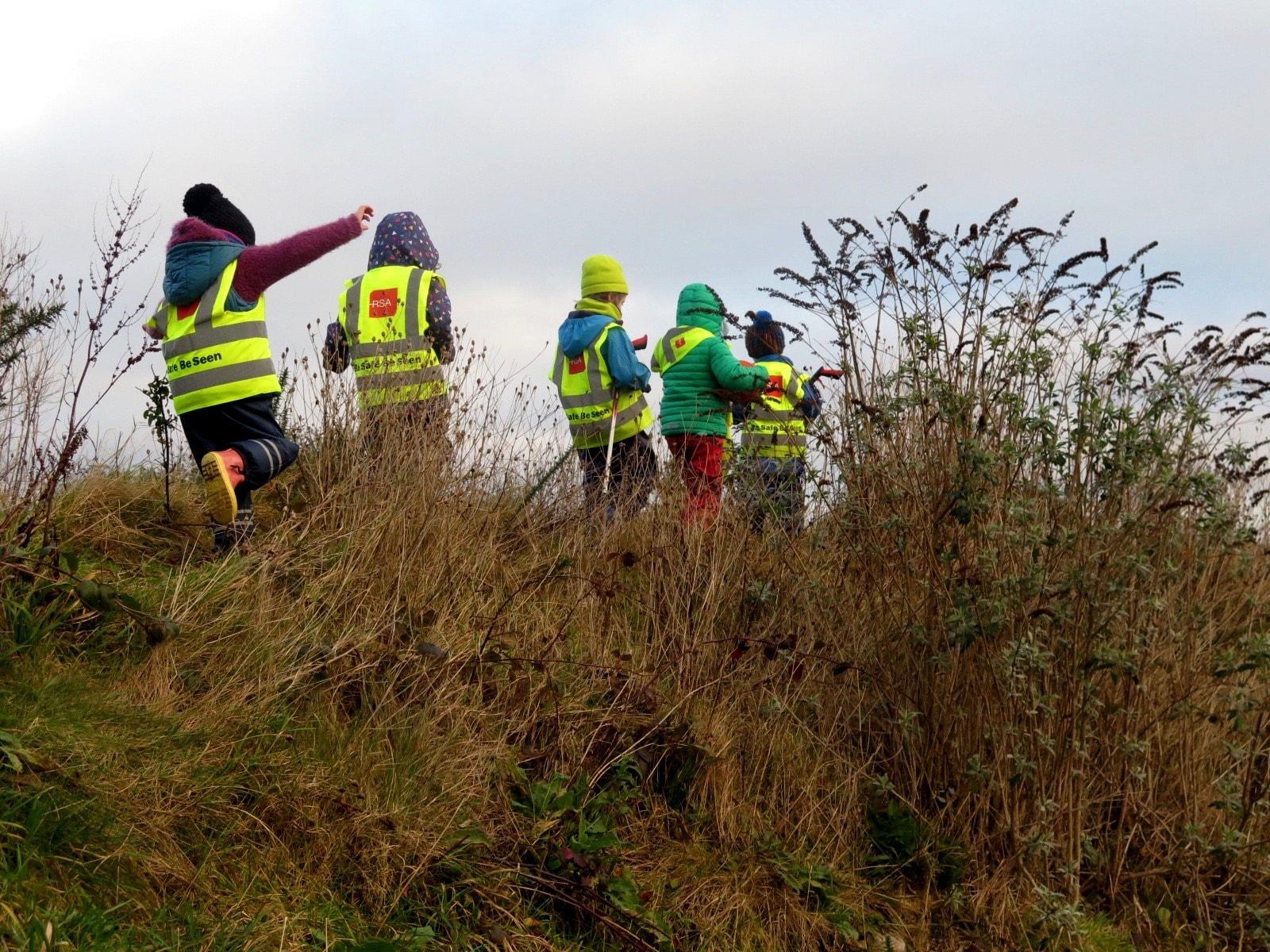 volunteer project: Galway Steiner National School (CES/SVE)  photo 7