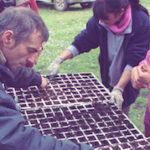 volunteer project: Eco-La Rioja (Nalda) photo 3