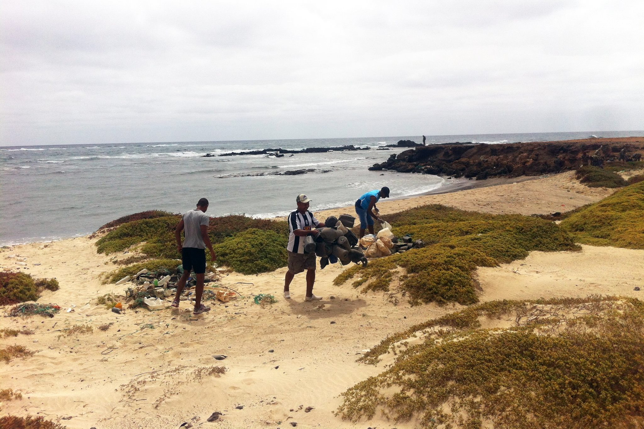 volunteer project: Conservation of the Loggerhead Sea Turtles photo 3