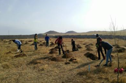 volunteer project: GREENING MONGOLIA photo 1