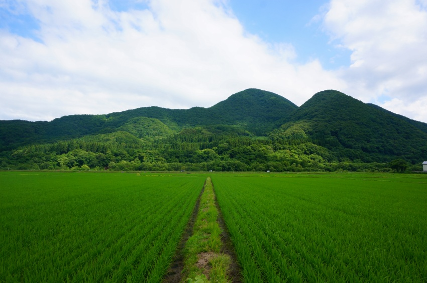 volunteer project: Shirakami 2 (Aomori) photo 1