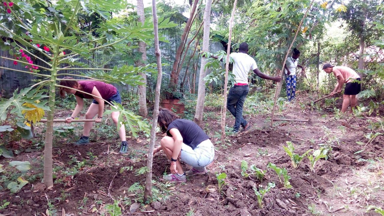 volunteer project: Badilisha Eco Village photo 2