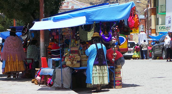 volunteer project: Make Cochabamba Green Again photo 5