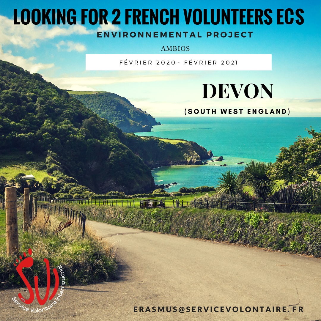 volunteer project: Projet environnemental à South Devon (CES/SVE)  photo 1