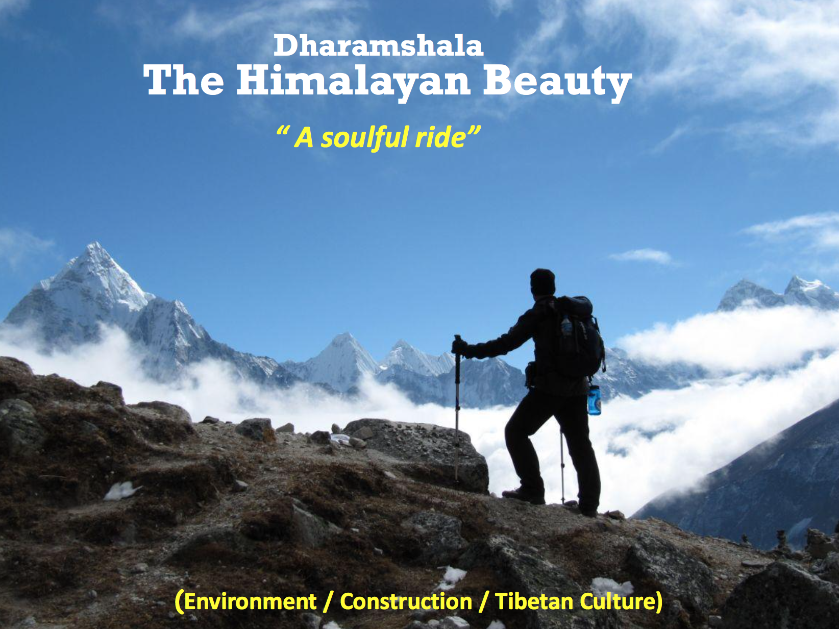 volunteer project: THE HIMALAYAN BEAUTY photo 1