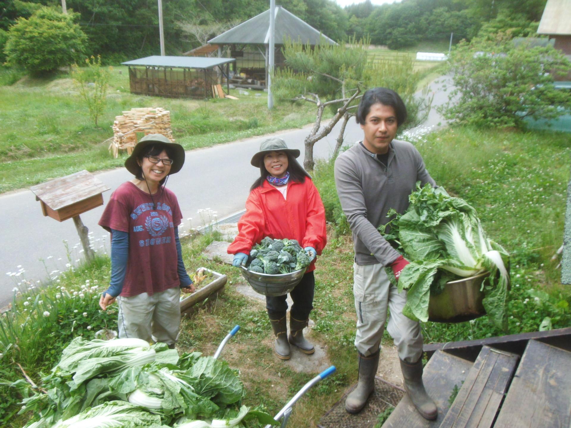 volunteer project: Samegawa (Fukushima) あぶくまエヌエスネット photo 23