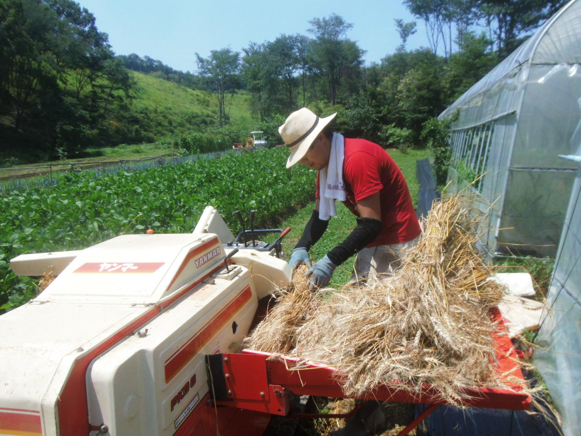 volunteer project: Samegawa (Fukushima) あぶくまエヌエスネット photo 24