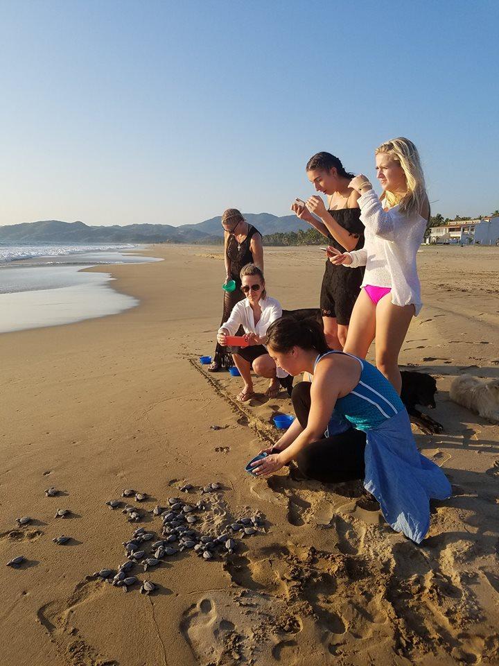 volunteer project: TURTLES CAMP photo 5