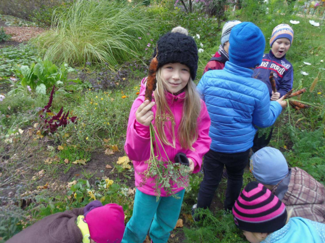 volunteer project: Võru Kindergarten Päkapikk - SVE photo 2